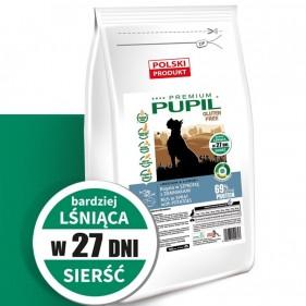 copy of PUPIL Premium...