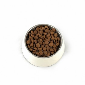 Karma dla psa Rafi Classic z dziczyzną i marchewką 1240 g kawałki w sosie