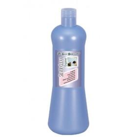 Iv San Bernard Silver Clean...