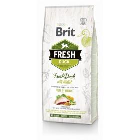 copy of BRIT Fresh Duck...